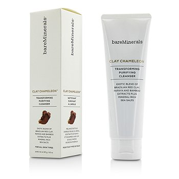 Bare Escentuals Clay Chameleon Transforming Purifying Cleanser